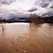 River Flood