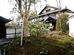 京都・高台寺 圓徳院 ねね様終焉の地