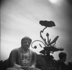 buddha and flower (Viv | Seattle Bon Vivant) Tags: travel film japan analog holga kamakura ishootfilm wanderlust filmcamera analogphotography scannednegative greatbuddha bergger200