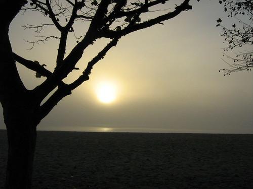 A praia na nenblina