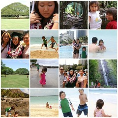 hawaii07_mosaic