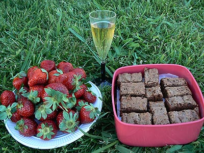dessert sur l'herbe.jpg