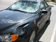 Damage to side panel and windshield from the elk (ArizonaGryl) Tags: elk towing collision