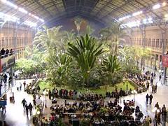 馬德里火車站的室內叢林