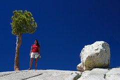 Girl, Rock, Tree (acastellano) Tags: california blue sky mountains tree topf25 girl topv111 rock topv333 rocks explore yosemite granite sierras sierranevada jesters onblue olmsteadpoint topvaa interestingness81