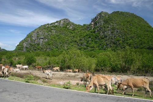 Khao Sam Roi Yot Nat. Park