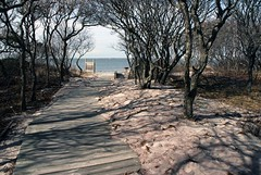 Talisman Beach (Alida's Photos) Tags: trees beach shadows path walkway talisman fireislandny barrierbeach svfsposs