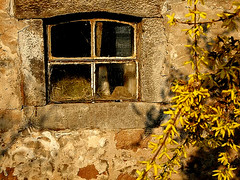 window in the morning sun ( Peter & Ute Grahlmann ) Tags: art texture window glass yellow wall rural photoshop stones farm country blossoms finepix frame fujifilm framing 1001nights marburg forsythie wow1 wow2 wow3 wow4 blueribbonwinner supershot 100faves 1000v40f bracht golddragon s6500fd abigfave vision1000 anawesomeshot impressedbeauty superaplus aplusphoto visiongroup superbmasterpiece diamondclassphotographer flickrdiamond superhearts thechallengefactory vision100
