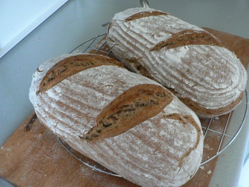 Bauernbrot 004 - Farmhouse Bread