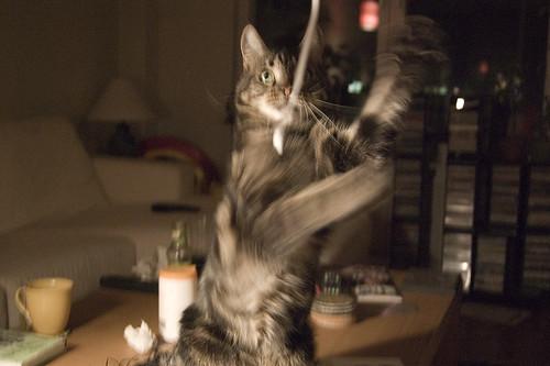EFIT 2007-04-19, 21:50: Morris leker