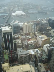 View from the Sydney Tower (Tali C.) Tags: view sydney observationtower diamondclassphotographer