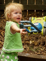 Mowing the garden (davemonkey71) Tags: green audrey mower