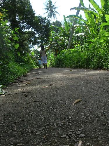 my childhood walk
