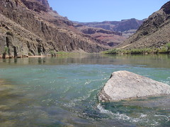 Grand Canyon at the Tapeats Creek & Colorado River confluence looking east (Al_HikesAZ) Tags: park camping arizona water rio creek river landscape waterfall nationalpark colorado 500v20f hiking grandcanyon passages grand az paisaje canyon hike national 2550fav backpacking coloradoriver 50100fav backcountry geology inthecanyon  grandcanyonnationalpark coloradoplateau awesomeshot literaryreference grancaon 10faves 20faves gcnp awesomenature 123faves thunderriver 25faves 250v10f desertrivers unature sendirismo tapeats alhikesaz tapeatscreek vishnuschist   arizonapassages belowtherim
