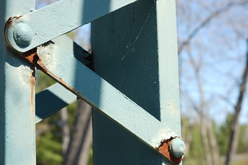 spiderweb on bridge