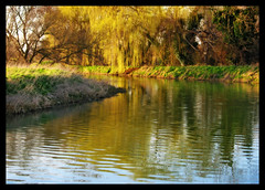 While away the hours (Gary*) Tags: sun sunlight colour nature water reflections river countryside spring bravo bend sandy bedfordshire shade willows orton interestingness3 ivel magicdonkey flickrsbest lovephotography speclandscape superaplus aplusphoto rnbivel
