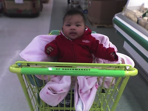 First time sitting in a grocery cart seat