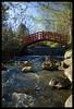 Japanese Garden bridge (Ledio (mostly away)) Tags: nature d50 landscape nikon michigan postcard earlymorning cranbrook cranbrookgardens peisazh nikonstunninggallery piesazh