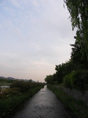 PICT0330