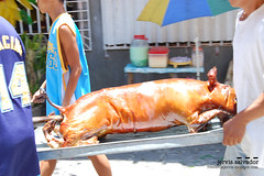 DSC_0382 (studio_juan) Tags: pahiyas lucban quezon philippines customs tradition harvest farmers sanisidrolabrador nikon d40 nikonstunninggallery