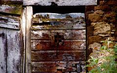 Non si può tenere la porta chiusa davanti alla primavera - by Marianone