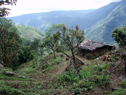 Landscape himalaya