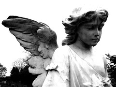One-Winged Angel (v1ctory_1s_m1ne) Tags: bw church grave graveyard statue angel wings churches statues graves explore churchyard worcestershire groovy bromsgrove instantfave explored tardebigge 220407 v1m spotthereferenceinthetitlekids