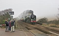 Last of the Year (Deepgreen2009) Tags: tornado steam uksteam brockham surrey hills belmond pullman pacific fog mist power train railway waving audience watching crossing lunch