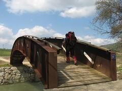 163 Puente la Reina - Estella D5