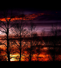 Yup....mmm hmmm....won't be long now (Space Ritual) Tags: sunset sky canada tree rural dusk saskatoon saskatchewan bigmomma dimex youvsthebest thepinnaclehof