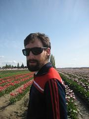 me sunglasses tulips farm mountvernon skagitvalley tulipfestival mtvernon greekbeard