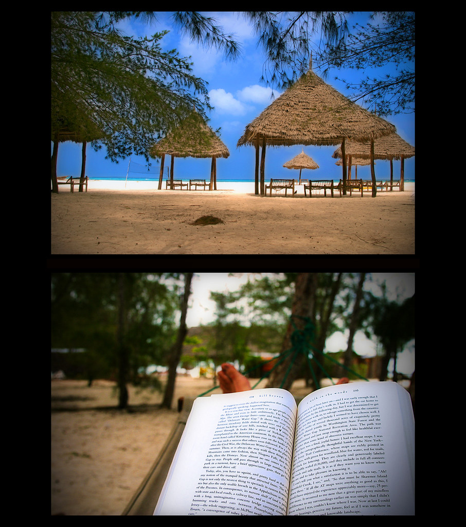 the good life - reading at the beach