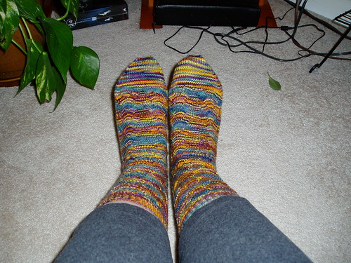Monkey socks2