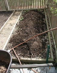 compost in bed