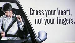 Seat Belt #1