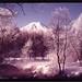 富士山:Mt.Fuji, moutain, night view, 富士山, 山, 夜景, 風景, 空撮, sky, view, night, snow, winter