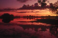Kakadu sunset (Greg Miles) Tags: sunset bravo australia northernterritory kakadunationalpark yellowwaters diamondclassphotographer flickrdiamond