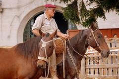 El reservado (Eduardo Amorim) Tags: horses horse southamerica caballo uruguay cheval caballos cavalos prado montevideo pferde cavalli cavallo cavalo gauchos pferd hest hevonen chevaux gaucho  amricadosul montevidu hst uruguai gacho  amriquedusud  gachos  sudamrica suramrica amricadelsur  sdamerika   americadelsud  americameridionale semanacriolla semanacriolladelprado eduardoamorim