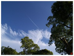 Blue Sky 070527 #06