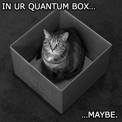 lol at Schrodinger's Lolcat