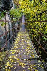 Spain - Granada - Monachil - Los Cahorros Footpath (Marcial Bernabeu) Tags: puente bridge colgante suspension marcial bernabeu bernabu spain espaa andaluca andalucia andalusia granada monachil cahorros loscahorros sendero footpath path trail senderismo otoo autumn fall