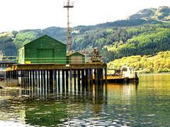 green hut (Scalyback) Tags: water landscape scotland olympus loch favourite e500 faslane cotcbestof2006 ibeauty scalyback