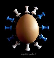 ACUPUNCTURE (mauricio cevallos www.mauriciocevallos.com) Tags: egg acupuncture huevo fz30 peopleschoice p1f1