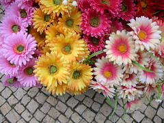 fake flowers i