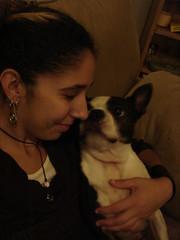 love (LoudaLouda) Tags: family dog love boston charles terrier louda - 445570225_7c3ff08c2e_m