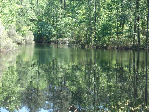 4c-lake.jpg