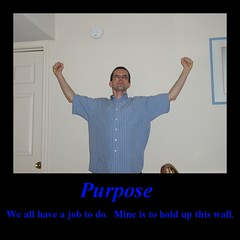 Pupose: We all have a job to do. Mine is to hold up this wall.
