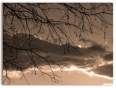 behind clouds sun always shines (Svjetlost) Tags: light sepia bravo searchthebest soe rumi mirna magicdonkey svjetlost abigfave bronic ultimateshot irresistiblebeauty beyondexcellence