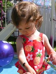 That's My Girl!! (Chair) Tags: toddler scarab theya scarabaeidae kidholdingabeetle entomobaby