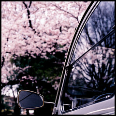 dolly. (brewskizzlr) Tags: old reflection classic film window car japan square cherry geotagged 50mm tokyo interestingness fuji venus blossom citroen grain olympus voiture explore bloom  sakura  grainy om f18 dolly zuiko hiroo om2n venus400 citron  zuiko50mmf18 citroendolly favoritesonly brewskizzlr 1on1reflections 1on1reflectionsphotooftheday superbmasterpiece 1on1reflectionsphotoofthedayapril2007 geo:lat=35652576 geo:lon=139726586 citrondolly